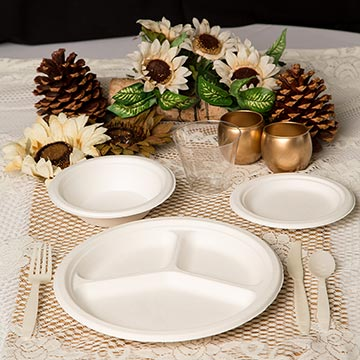 Biodegradable Plates and Silverware