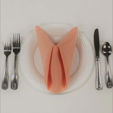 Disposable White Plate with Silverware